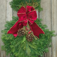 Using natural Balsam Fir, pine and fragrant cedar boughs, the Cranberry Splash Spray is trimmed with the same elements as the Cranberry Splash Christmas Wreath. While this Spray may be used by itself, it is often seen gracing either side of a home's garage or entryway pillars with the matching Wreath gracing the entryway door to the home. This Spray is extremely popular with our Christmas Wreath fundraising customers Length: 26 In. (approx.)