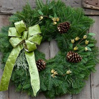The balsam fir Wintergreen Christmas Wreath combines a selection of interesting Christmas elements to create a truly memorable Holiday decoration. The soft, green fabric bow is made with wired ribbon to hold the full arc of the bow's loops and tails. Behind the bow is a swag of glittered faux cedar which adds just a hint of shimmer to the wreath. Three natural Ponderosa Pine cones, laced with jingle bells, add to the natural look of the Wintergreen Wreath. As the final touch, three sprigs of faux persimmons combine just the right amount of texture to make this wreath the best Holiday decoration that has ever graced the entrance of your home - and is a great addition to your Christmas Wreath Fundraising Program! Each 25 inch Wintergreen Holiday Gift Wreath is presented in an attractive gift box and includes an EZ Hanger and a personalized Christmas Card. The cost includes shipping costs in the 48 contiguous states. Only Available as a Holiday Gift Product shipped directly to the recipient. Not available in case quantities